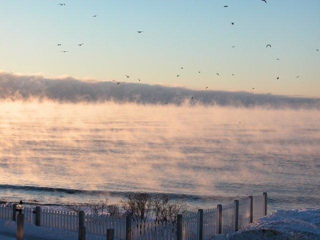El humo del mar es el resultado del aire helado que pasa sobre agua relativamente caliente; el fenómeno es raro, incluso en el Ártico.