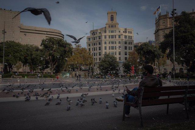 Plaça de Catalunya, Barcelona, Catalunya (Espanya), 16 de novembre del 2020.