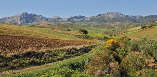 Paisaje gran senda montaña monte campo turismo verde naturaleza senderismo