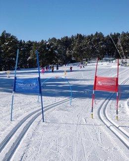 Escolars durant una jornada d'esquí nòrdico aquesta setmana.
