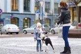 Foto: Claves para pasear con tu perro con hielo y nieve