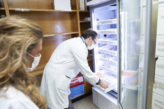 Primeras vacunas llegadas a Euskadi