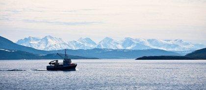 La pérdida de alimentos que genera la sobrepesca podría abastecer a 72 millones de personas, según advierte el sello MSC