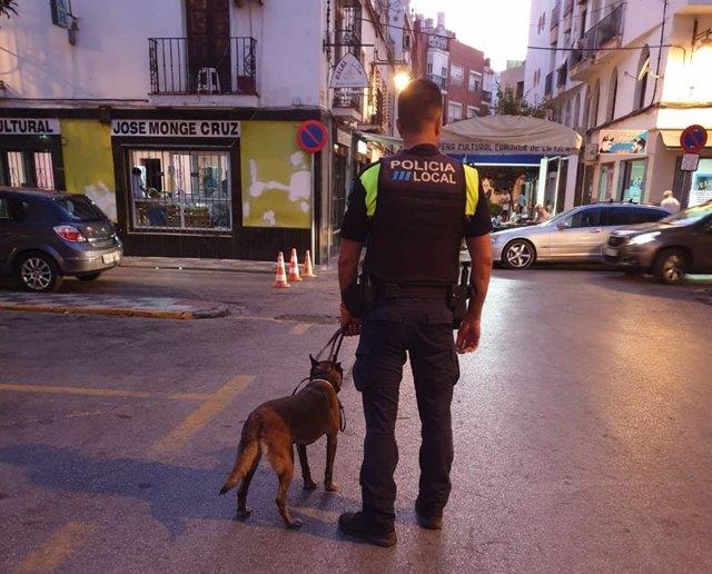 Imagen de archivo de la Policía Local de Algeciras