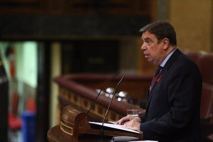 """El ministro de Agricultura confía en los seguros agrarios como """"respuesta"""" a los daños de 'Filomena' en los cultivos"""