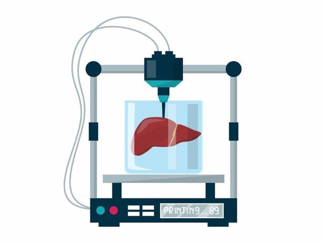 Hígados en laboratorios, ilustración.