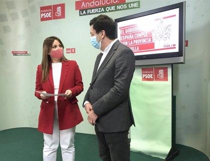 "Pérez (PSOE): ""Sánchez cumple con Sevilla con un potente escudo social ante la dura pandemia"""