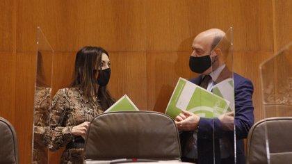 Vox en Aragón propone que el IVA de la factura eléctrica sea del tipo reducido