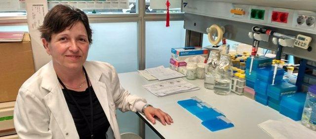 Anna Bigas, directora del CIBERONC e investigadora del IMIM-Hospital del Mar