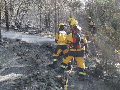 Dos incendios forestales queman 0,05 hectáreas en Baleares durante las dos primeras semanas de enero