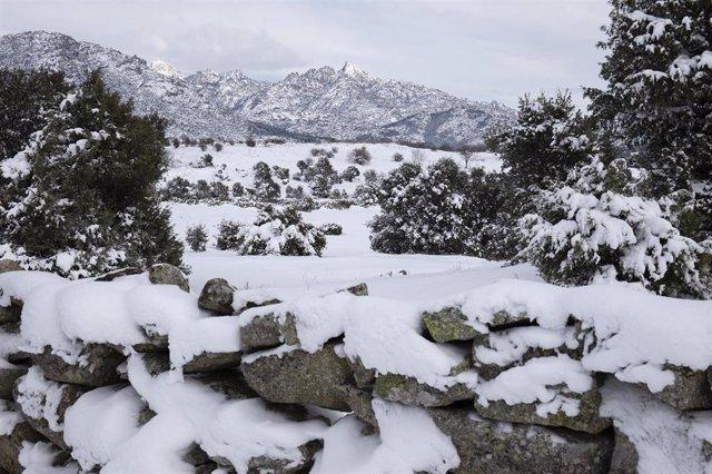 La Sierra de Madrid, cubierta por nieve tras la nevada fruto del temporal Filomena por la Comunidad de Madrid (España), a 10 de enero de 2021. La Comunidad de Madrid ha recordado a  los madrileños, a través de un comunicado, que en las próximas horas se v