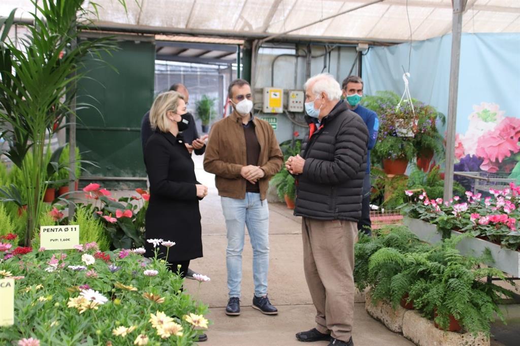 Canarias abona 5 millones para compensar el parón comercial del sector de la flor cortada