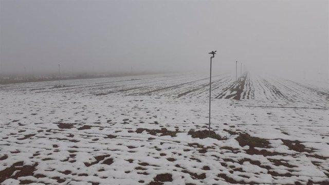 Campo en Los Monegros con nieve.