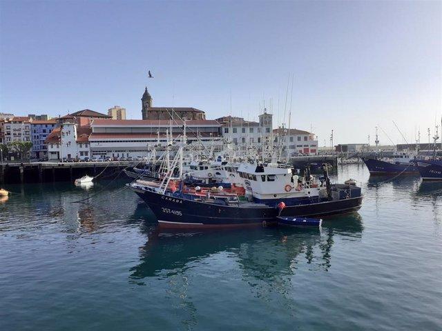 Barcos de pesca amarrados en el Puerto de Bermeo (Bizkaia)