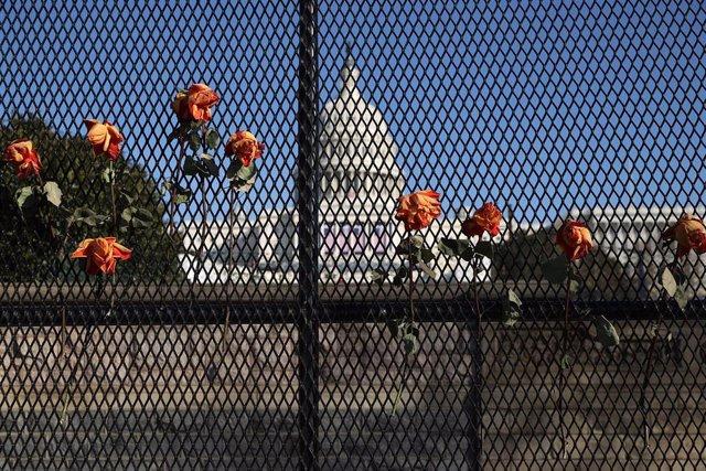Varias flores engarzadas en una de las vallas que rodean el Capitolio de los Estados Unidos como medida de seguridad para la toma de posesión de Joe Biden.