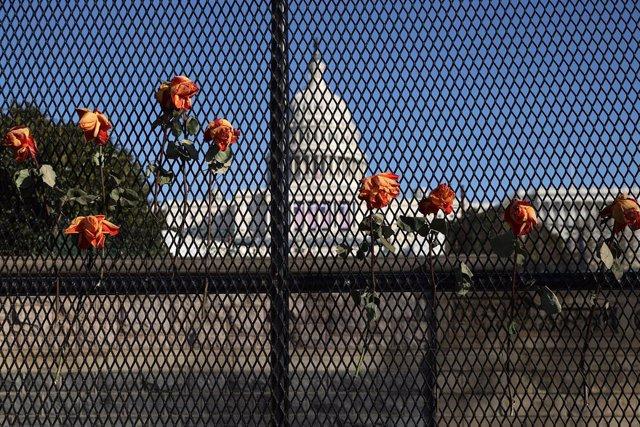 Diverses flors enfilades en una de les tanques que envolten el Capitoli dels Estats Units com una mesura de seguretat per a la presa de possessió de Joe Biden.