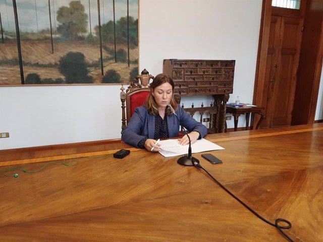 La portavoz de la Diputación de Lugo, Pilar García Porto, en rueda de prensa