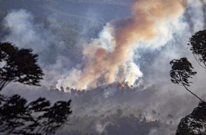 La Fundación ONCE organiza un curso para enseñar a evacuar a personas con discapacidad en incendios forestales