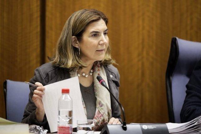La consejera de Empleo, Rocío Blanco, en comisión parlamentaria,  foto de archivo