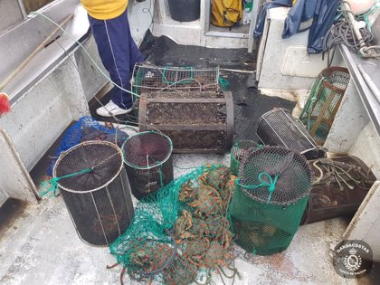 Requisados más de 500 kilos de especies de pescado y marisco en operativos contra el furtivismo en Galicia
