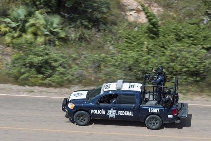 México.- La Fiscalía mexicana investiga la muerte de doce efectivos de las autodefensas de un municipio de Veracruz