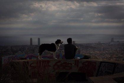 La salud, la educación y la familia, pilares fundamentales de los jóvenes españoles, según un estudio