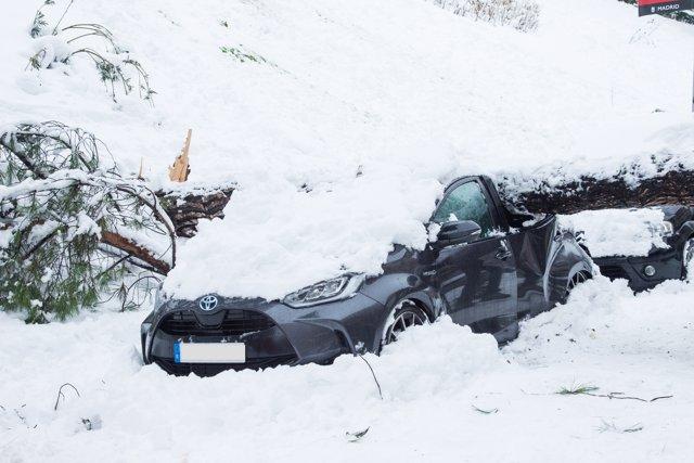 Un vehículo aplastado por un árbol durante la gran nevada provocada por la borrasca 'Filomena',  en Madrid (España), a 9 de enero de 2021.