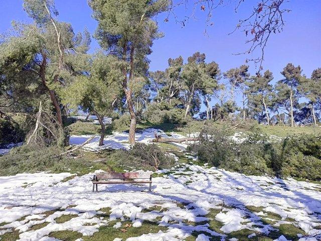 Parc Caramuel. Madrid (Espanya), 18 de gener del 2021