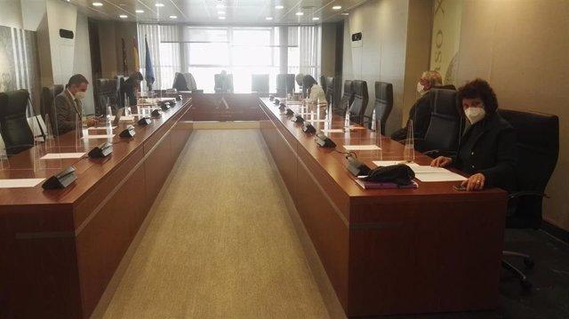 Reunión de la Ponencia de la Comisión especial de estudio sobre el Plan de Reactivación Económica y Social