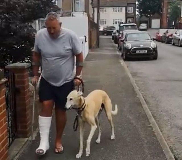 Conoce a Bill, un perro empático al que tardaron tiempo en descubrir que no era cojo, sino que imitaba la cojera de su dueño