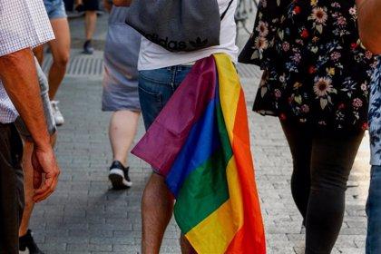 La Federación LGTB denuncia que el ordenamiento jurídico discrimina a las familias del colectivo