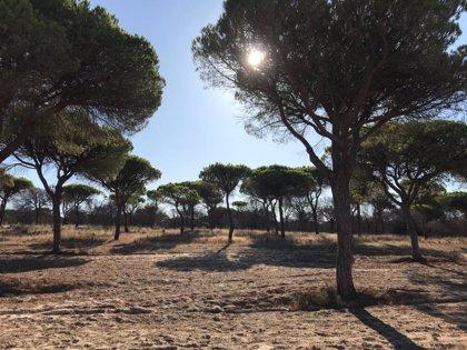 """Empresarios de Turismo Activo de Huelva se ven """"agraviados"""" con las medidas respecto al sector de la nieve"""