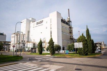 Basf batirá sus previsiones anuales por el rebote del cuarto trimestre
