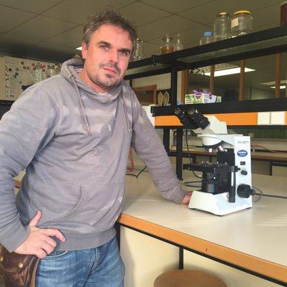 La Universidad de Granada participa en un estudio de los patrones de alimentación del mosquito tigre