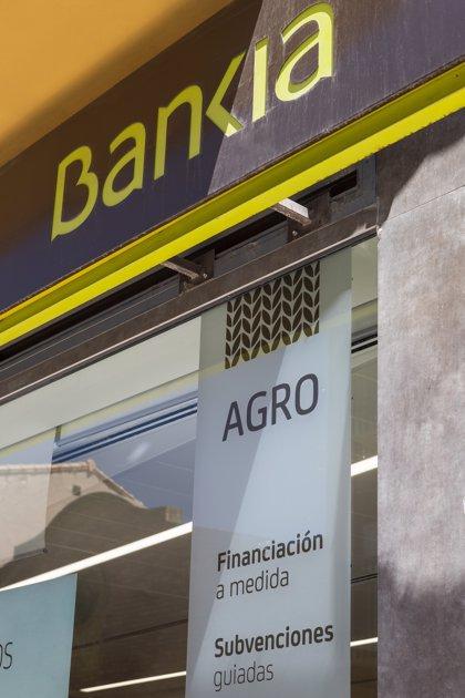 Agricultura.- Bankia destina casi 300 millones a financiar proyectos del sector agro en la Comunitat Valenciana en 2020