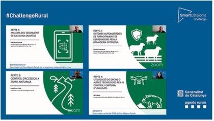 Agricultura.- La octava edición del concurso Smartcatalonia se centra en la protección del entorno natural