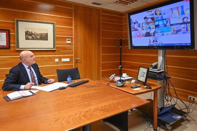Jesús Julio Carnero participa de forma telemática en la reunión.