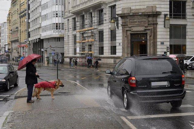 Una persona espera para cruzar con su perro en un paso de cebra de A Coruña, Galicia (España)