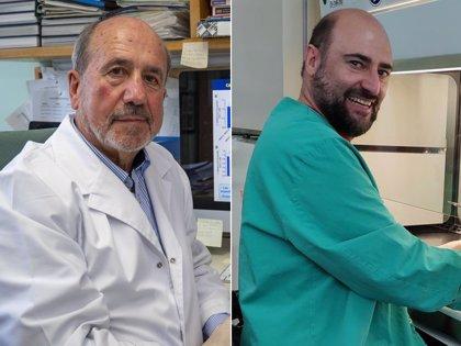 La vacuna del CSIC más adelantada contra el COVID-19 muestra una eficacia del 100% en ratones