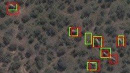 Elefantes en el bosque visto desde el espacio. Los rectángulos verdes muestran elefantes detectados por el algoritmo, los rectángulos rojos muestran elefantes verificados por humanos.