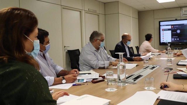 Imagen de la consejera de Agricultura, Carmen Crespo, en la reunión virtual de la Mesa de Interlocución Agraria para evaluar el decreto de transición de la PAC.