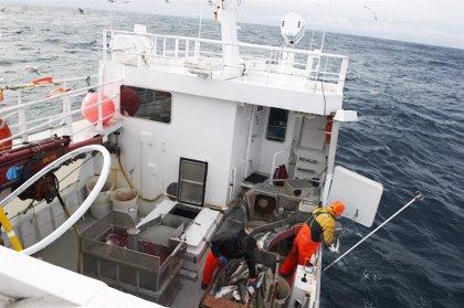 Las exportaciones de productos del mar de Noruega a España se elevaron un 12% en 2020
