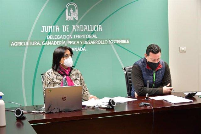 La delegada de Agricultura de la Junta en Granada, María José Martín, informa de las ayudas al sector agrario afectado por la Covid-19