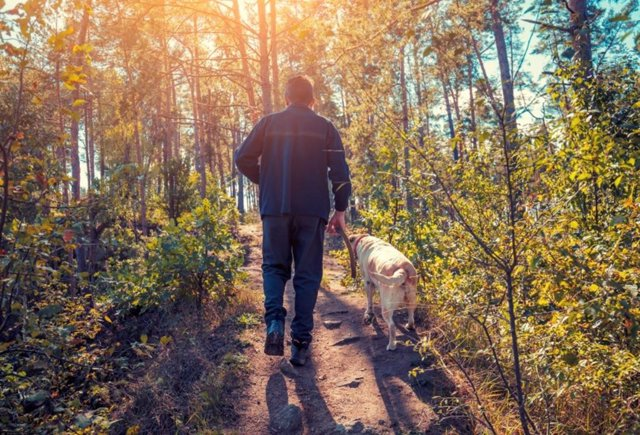 Este hombre de 73 años lleva 13 años como voluntario paseando mascotas de ancianos y enfermos