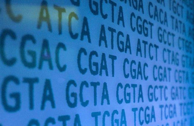 Científicos han descubierto un conjunto de reglas simples que determinan la precisión de la edición del genoma CRISPR/Cas9 en células humanas