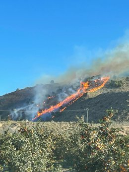 Imágenes cedidas por la Unidad de Defensa cotra los Incendios Forestales de la Dirección General del Medio Natural
