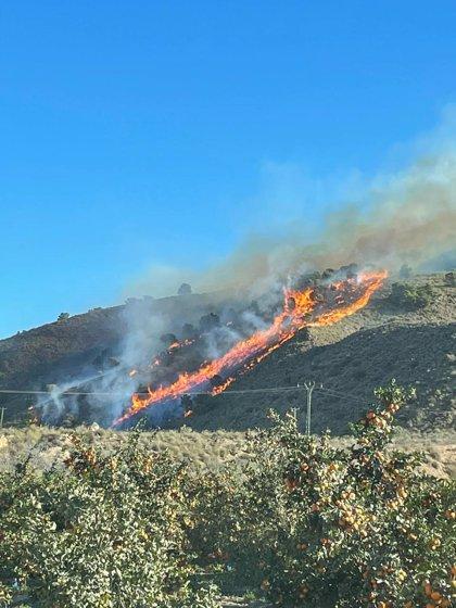 Efectivos del Plan Infomur trabajan para apagar un incendio forestal declarado en la Sierra de Carrascoy