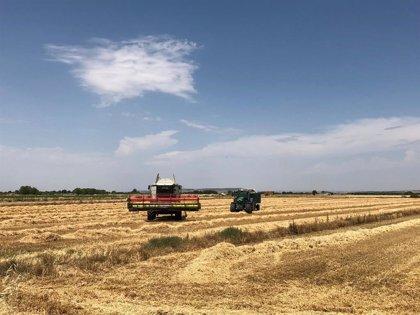 Jesús Calleja, nuevo embajador de Fontaneda en su compromiso con la biodiversidad de las áreas de cultivo de trigo