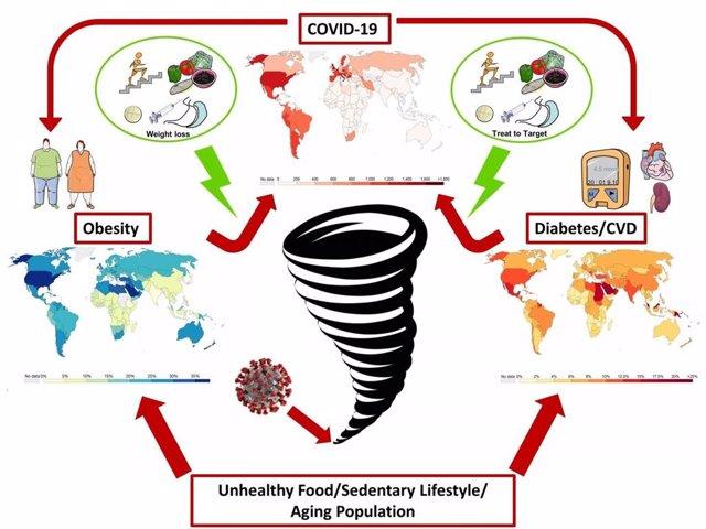 La obesidad y las enfermedades cardiometabólicas no solo desencadenan un curso más severo de COVID-19, la infección por SARS-CoV-2 podría promover el desarrollo de estas afecciones.