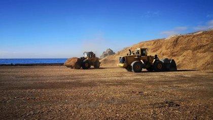 El Puerto de Almería incrementó un 1.400% la exportación de maderas en 2020